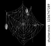 vector illustration of... | Shutterstock .eps vector #1236747289