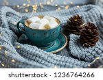 cup of coffee  marshmallow ... | Shutterstock . vector #1236764266