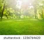 spring grass background with... | Shutterstock . vector #1236764620