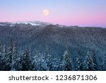 winter landscape with a full... | Shutterstock . vector #1236871306