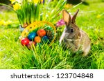 Living Easter Bunny With Eggs...