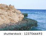 sharm el shaikh  egypt  ...   Shutterstock . vector #1237066693