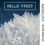"""hello Frost"" Written On Winter ..."