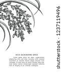 rice frame clip art hand draw... | Shutterstock .eps vector #1237119496