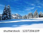 winter in bavaria  fir trees...   Shutterstock . vector #1237206109