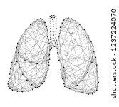 lungs human organ of...   Shutterstock .eps vector #1237224070