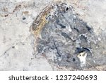 marble natural pattern for... | Shutterstock . vector #1237240693