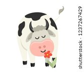 cute cow sniffs a flower. set... | Shutterstock .eps vector #1237267429