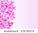 lilac pattern with empty space   Shutterstock . vector #123729274