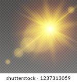 sunlight a translucent special...   Shutterstock .eps vector #1237313059