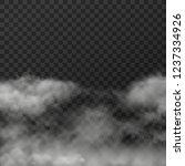 vector illustration of white... | Shutterstock .eps vector #1237334926