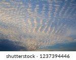Evening Altocumulus Clouds...