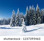 untouched winter landscape  fir ...   Shutterstock . vector #1237395463