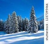 winter in the bavarian allg u ...   Shutterstock . vector #1237395466