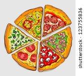 illustration of tasty pizza | Shutterstock .eps vector #123755836