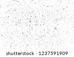 texture is black and white... | Shutterstock . vector #1237591909