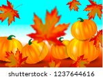 bright orange pumpkins and... | Shutterstock .eps vector #1237644616