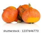 group of three whole ripe fresh ... | Shutterstock . vector #1237646773