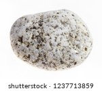 macro photography of natural... | Shutterstock . vector #1237713859