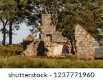 ruins of croft at moss of... | Shutterstock . vector #1237771960