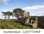 ruins of croft at moss of... | Shutterstock . vector #1237771969