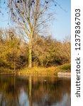 jubilee lake royal wootton... | Shutterstock . vector #1237836703