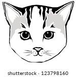 cat face   Shutterstock .eps vector #123798160