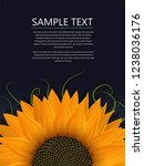 sunflower vector illustration...   Shutterstock .eps vector #1238036176
