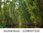 waterway in tra su capujut... | Shutterstock . vector #1238037220