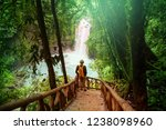 hiking in green tropical jungle ... | Shutterstock . vector #1238098960