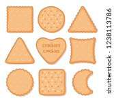 biscuit cookie snacks. vector... | Shutterstock .eps vector #1238113786