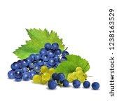 fresh  nutritious  tasty grapes.... | Shutterstock .eps vector #1238163529