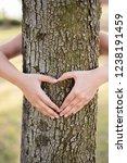 closeup hands of woman hugging... | Shutterstock . vector #1238191459