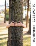 closeup hands of woman hugging... | Shutterstock . vector #1238191480