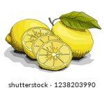 vector illustration sketch of... | Shutterstock .eps vector #1238203990