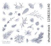 bundle of elegant winter...   Shutterstock . vector #1238231140