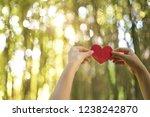 woman hands holding red heart | Shutterstock . vector #1238242870