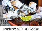 oysters and lemon | Shutterstock . vector #1238266750