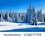 untouched winter landscape of...   Shutterstock . vector #1238277709