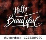 hello beautiful handwriting... | Shutterstock . vector #1238289370