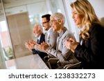 satisfied proud business team... | Shutterstock . vector #1238332273