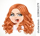 beautiful angry aggressive... | Shutterstock .eps vector #1238341579