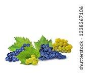fresh  nutritious  tasty grapes.... | Shutterstock .eps vector #1238367106