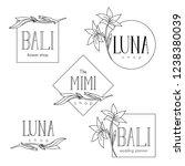 elegant linear logos for women... | Shutterstock .eps vector #1238380039