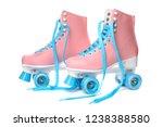 pair of bright stylish roller... | Shutterstock . vector #1238388580