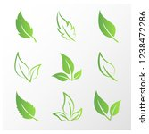think green leaves | Shutterstock .eps vector #1238472286