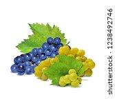 fresh  nutritious  tasty grapes.... | Shutterstock .eps vector #1238492746