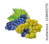 fresh  nutritious  tasty grapes.... | Shutterstock .eps vector #1238492770