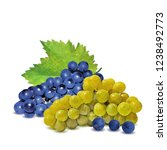 fresh  nutritious  tasty grapes.... | Shutterstock .eps vector #1238492773