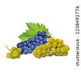 fresh  nutritious  tasty grapes.... | Shutterstock .eps vector #1238492776